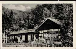 Postcard Netzkater Ilfeld Harztor, Bahnhofsgaststätte, Fachwerkhaus, Wald