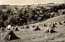 Postcard Wohlbad Mühlental Vogtland, Blick auf den Ort, Feld, Heuberge