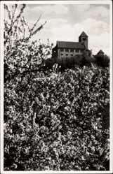 Postcard Weinheim an der Bergstraße Baden, Die Wachenburg im Blütenkranz