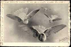 Künstler Ak Lacroix, Vier Tauben im Flug