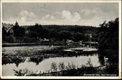 Postcard Bad Helmstedt in Niedersachsen, Brunnentalsee, Schwäne