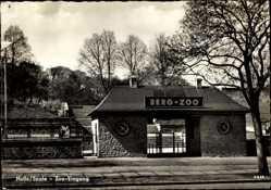 Postcard Halle an der Saale, Blick auf den Eingang zum Zoo, Tor, Straßenpartie