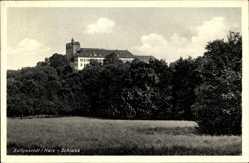 Postcard Ballenstedt im Harz, Blick auf das Schloss, Wiese, Vegetation