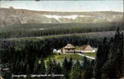 Postcard Riesengebirge, Schlingelbaude, Schronisko na Starej Polanie, Teichränder