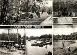 Ak Machern in Sachsen, Blick auf die Lübschützer Teiche