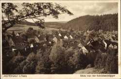Postcard Altenau im Oberharz, Blick von der Schützenklippe auf den Ort, Wald