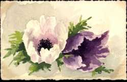 Handgemalt Ak Stillleben, Mohnblüten, Blumen, Kitsch