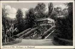 Postcard Riesa an der Elbe, Partie an der Freitreppe im Stadtpark
