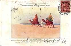 Postcard Algerien, sur la Plage, Kamele, Cie de Navigation Mixte