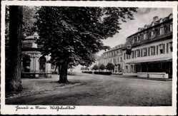Postcard Hanau im Main Kinzig Kreis, Straßenpartie am Wilhelmsbad