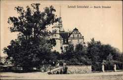 Ansichtskarte / Postkarte Schönfeld in Sachsen, Blick auf das Schloss, Straßenpartie, Glockenturm
