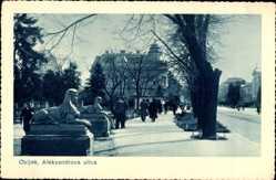 Postcard Osijek Kroatien, Aleksandrova Ulica, Straßenpartie, Sphinxstatuen