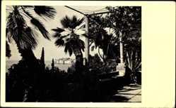 Postcard Dubrovnik Kroatien, Gartenpavillon, Meerblick, Palmen