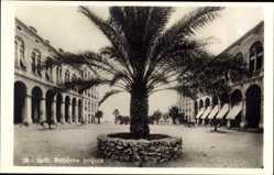Postcard Split Kroatien, Boticeva polijana, Palme, Geschäfte, Platz, Fassade