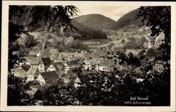 Postcard Bad Teinach Zavelstein im Nordschwarzwald, Blick auf den Ort, Felder, Wald