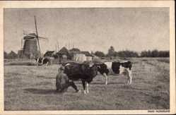 Ak Niederlande, Mooi Nederland, Windmühle, Bauer melkt Kuh