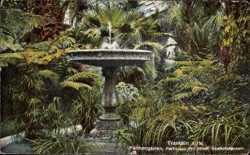 Gewächshaus, Brunnen