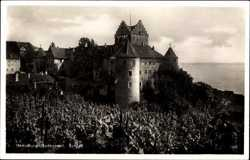 Schloss, Weinreben