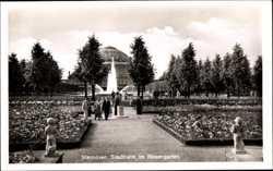 Stadthalle, Rosengarten