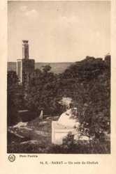 Un coin du Chellah