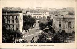 Avenue Lamoriciere
