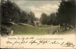 Le Grand ravin et le pont rustique au bois