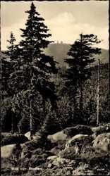 Blick zum Brocken